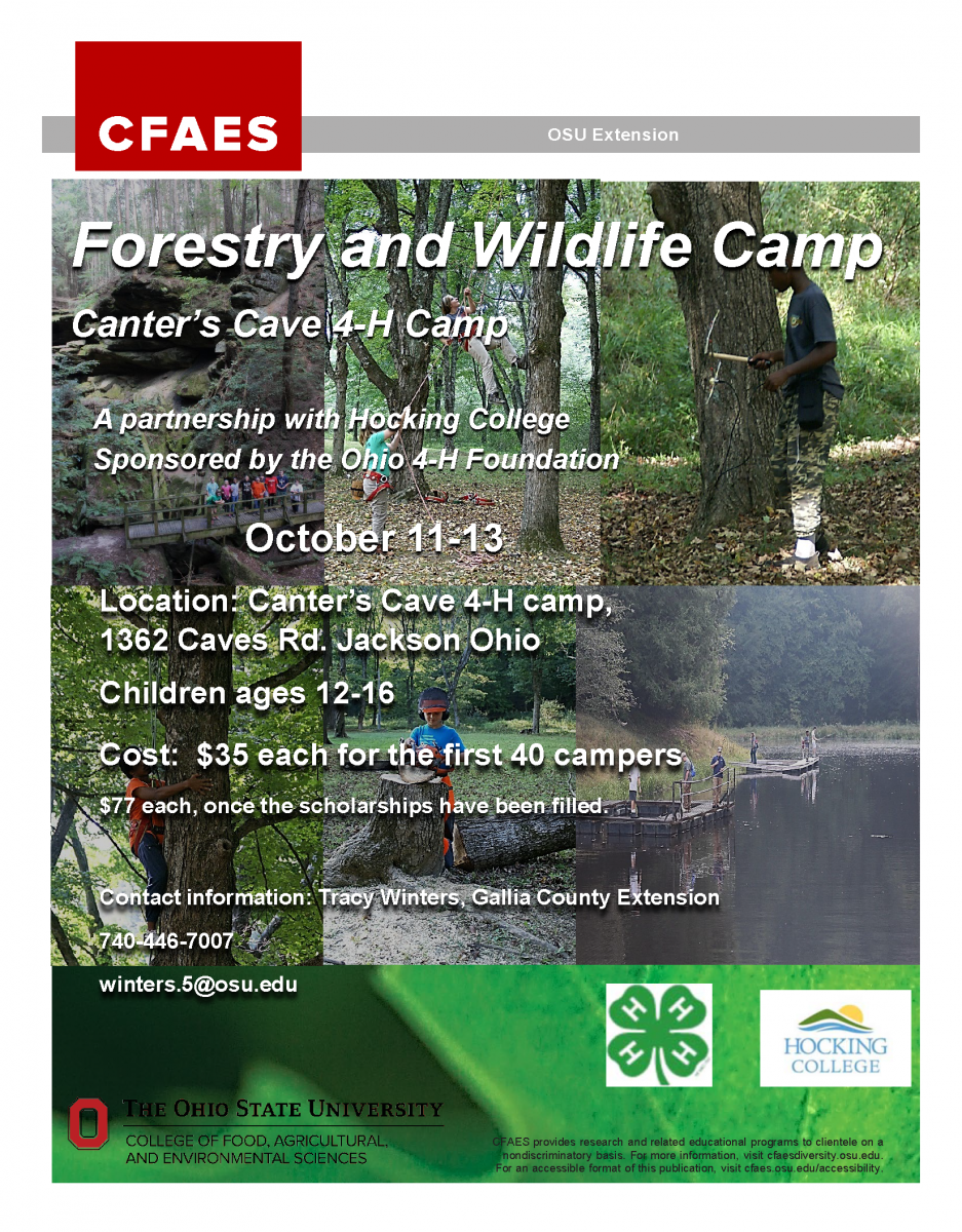 4-H Forestry Wildlife Camp